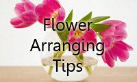 Flower arrangement tips
